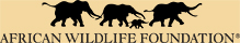 Eyes on Africa is a corporate sponsor of The African Wildlife Foundation